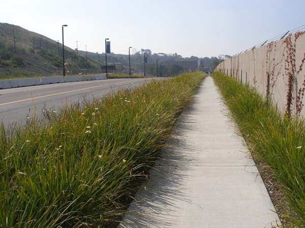 College Boulevard: New entrance road into West LA College