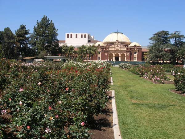 Los Angeles Exposition Park Rose Garden