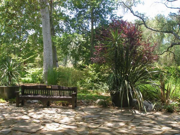 Descanso Gardens A Cool Trip On A Warm Summer Day One Good Life In Los Angeles