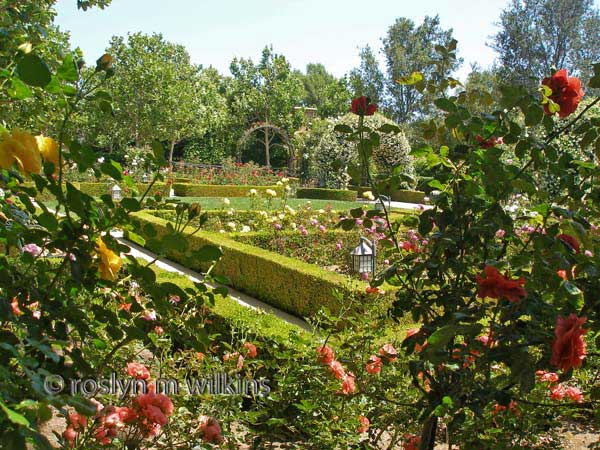 gardens-of-the-world rose garden