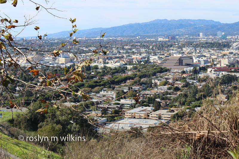culver-city-park-and-overlook-121512-024-C-800px