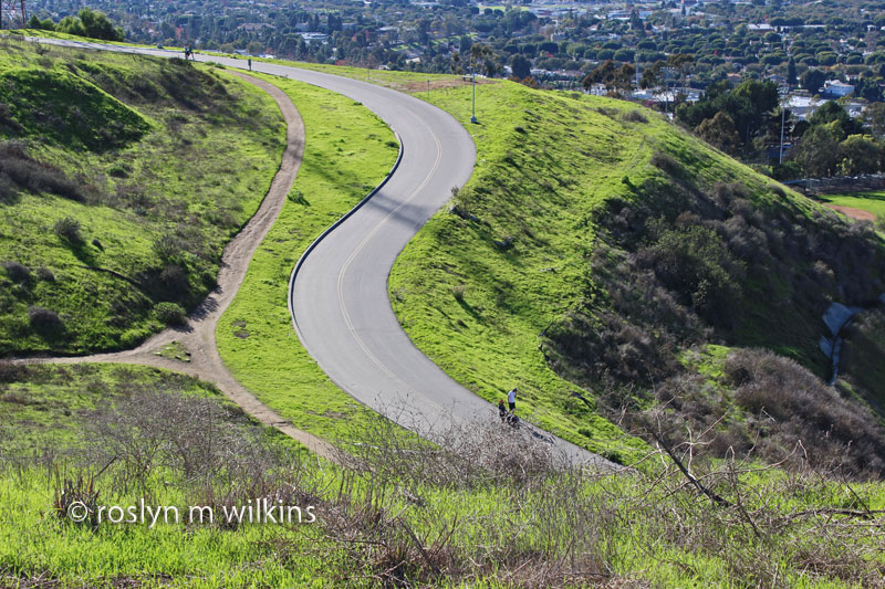 culver-city-park-and-overlook-121512-032-C-800px