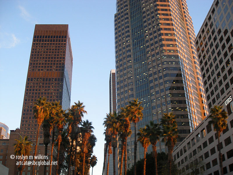 los-angeles-downtown-010213-011-C-800px