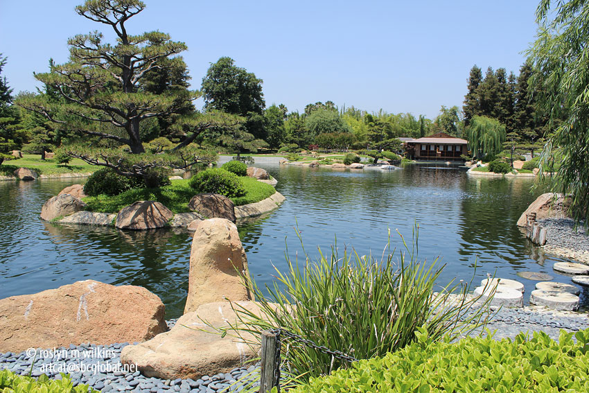 The japanese garden at the tillman water reclamation plant for Japanese garden bushes