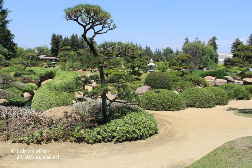 In dry gardens, islands are symbolized by rocks of interesting shapes set in gravel or sand
