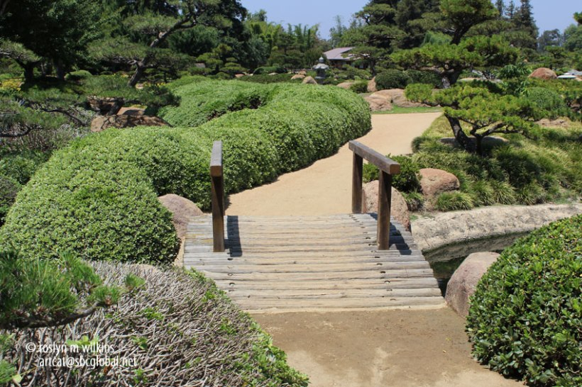 rees and plants used in the garden are closely interwoven with the spiritual and physical life of the Japanese people. The pine is a major basic structural tree. Traditionally it is called tokiwa and, as an evergreen, it expresses both longevity and happiness.