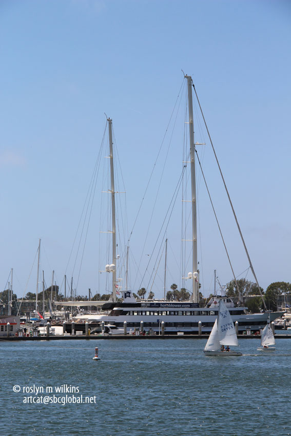 Ambling around marina del rey part one fisherman s for Marina del rey fishing charter