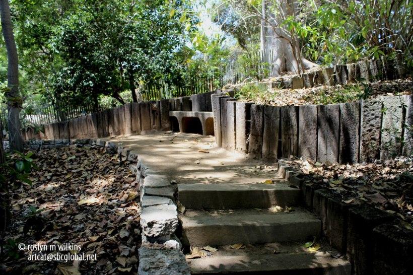 ucla-botanical-gardens