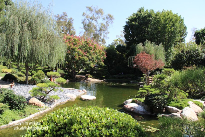 The Earl Burns Miller Japanese Garden