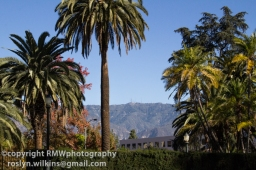 Palms and mountains, so LA!