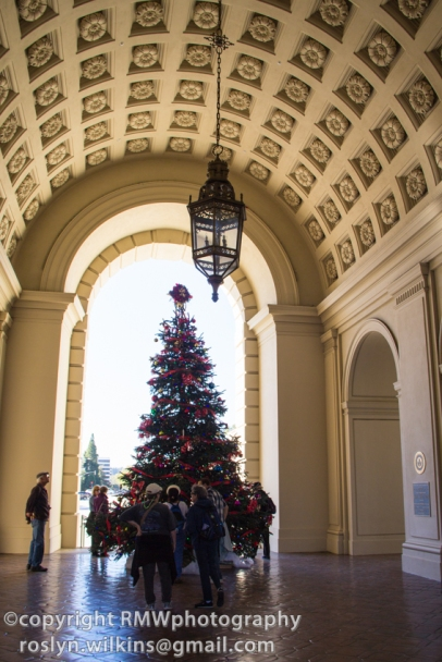 Christmas tree framed by arch