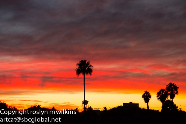 culver city sunset sony studios