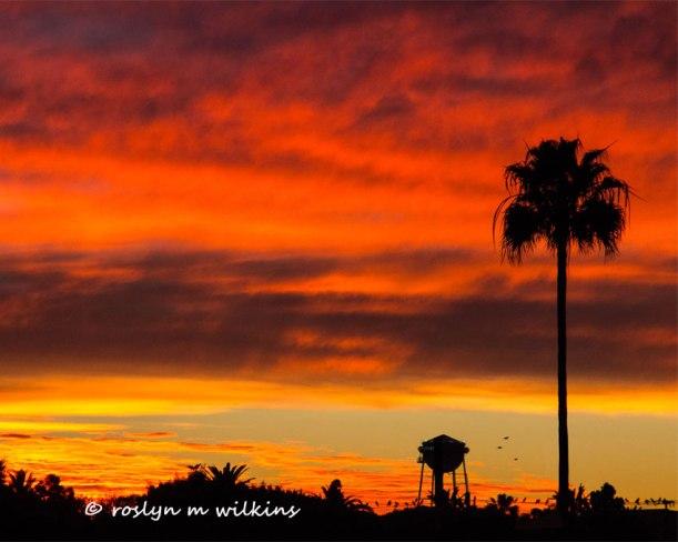 culver city sony studios sunset