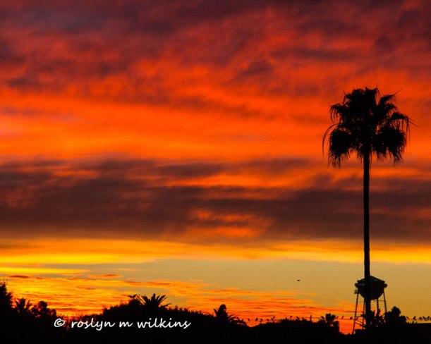 sunset-120213-007-L-C-850px