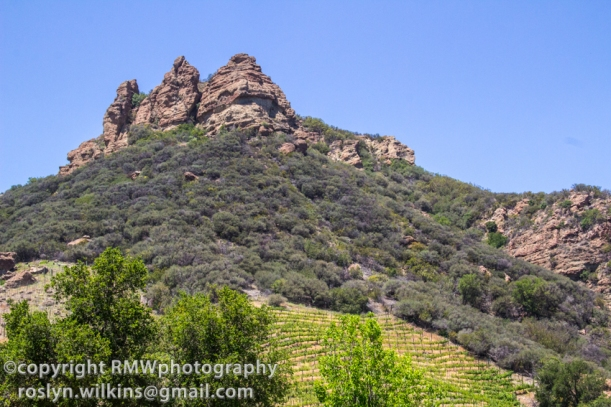 malibu family wines at saddle rock ranch