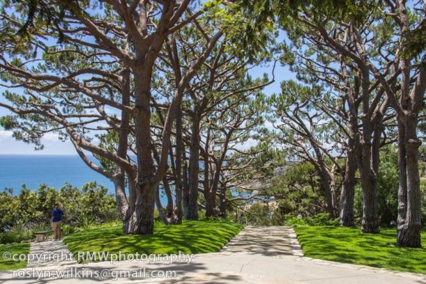 palos-verdes-wayfarers-chapel-071614-014-C-850px