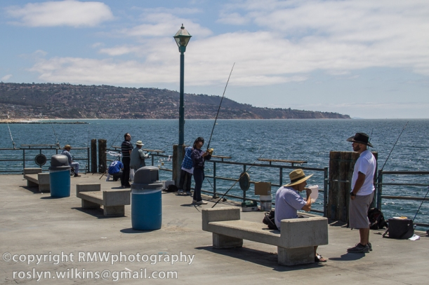 Redondo beach pier for Redondo beach pier fishing