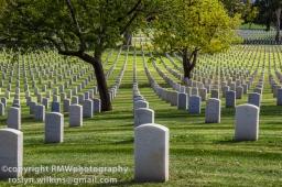 veterans-cemetery-westwood-101514-096-850px