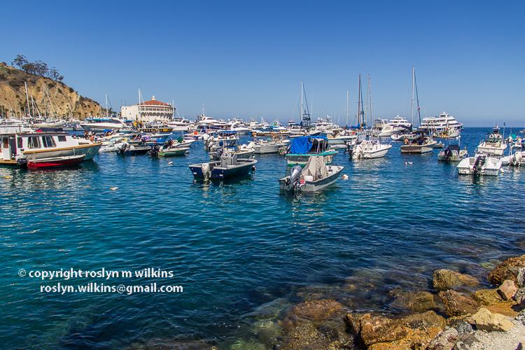 catalina-island-091915-022-C-750px