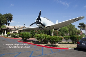 Proud Bird Restaurant planes