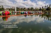 Macarthur-park-091615-022-C-750px