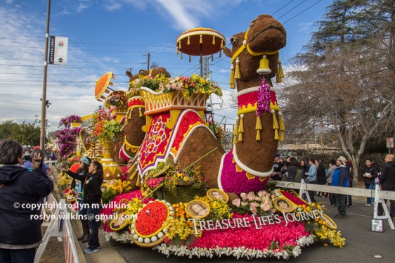 rose-parade-floats-010216-028-C-700px