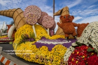 rose-parade-floats-010216-056-C-700px