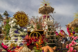 rose-parade-floats-010216-123-C-700px