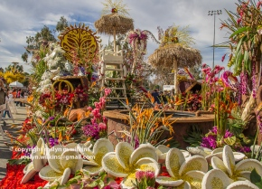 rose-parade-floats-010216-134-C-700px