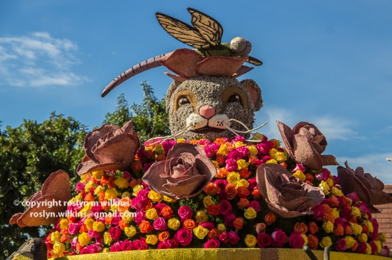 rose-parade-floats-010216-302-C-700px