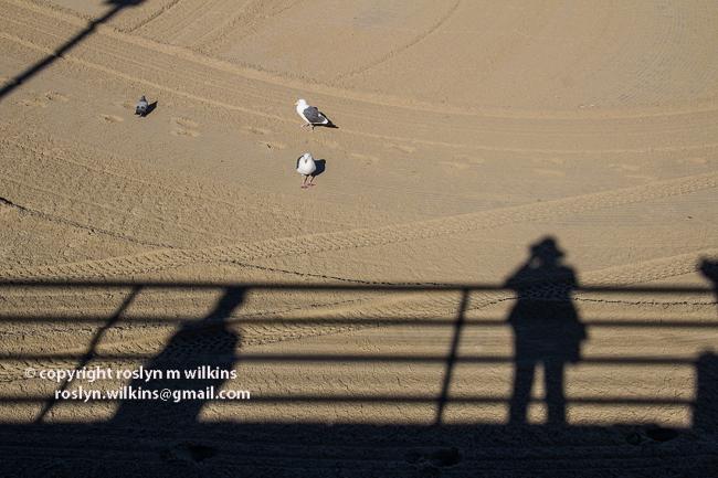 pier-palisades-beach-012116-063-C-650px
