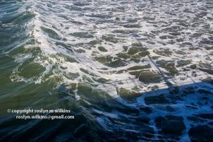 pier-palisades-beach-012116-103-C-650px