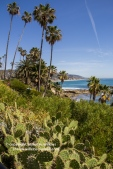 laguna-beach-042016-245-C-600px