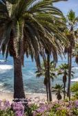 laguna-beach-042016-255-C-600px