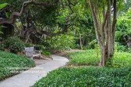 arboretum-051416-091-C-600px