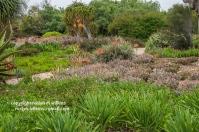 arboretum-051416-143-C-600px