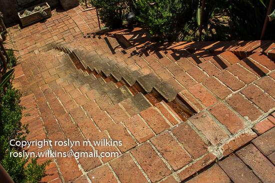 virginia-robinson-073016-027-C-550px