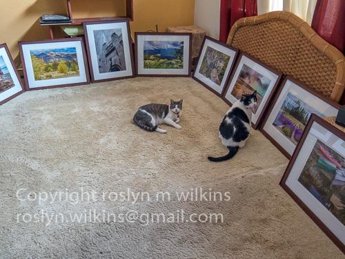 frankie and freddie deciding on artwork