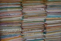 huntington-library-050717-64-C-500px