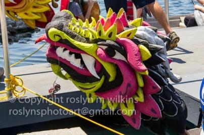 lotus-festival-071517-063-C-500px