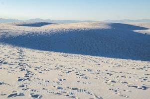 white-sands-101517-105-C-500px