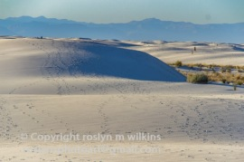 white-sands-101517-131-C-500px-2