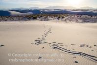 white-sands-101517-132-C-500px