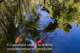 huntington-032818-157-C-500px